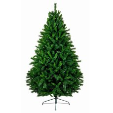 7ft Caledonian Fir Christmas Tree