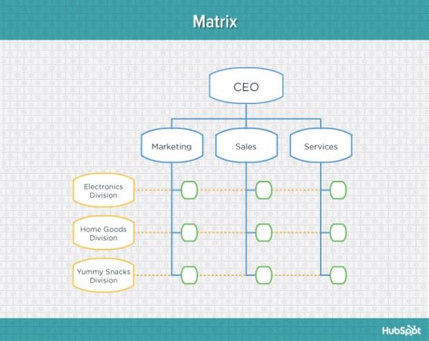 Teal diagram of matrix organizational structure