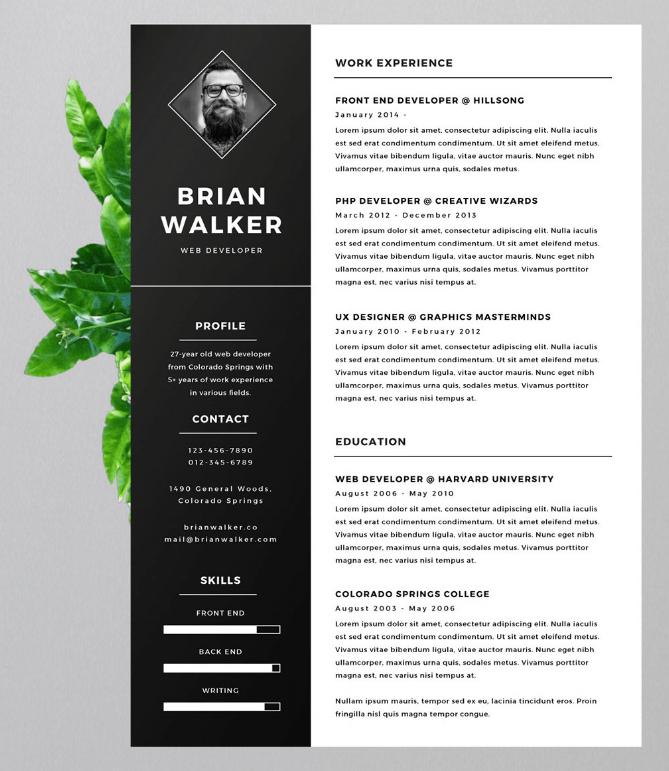 headshot resume examples