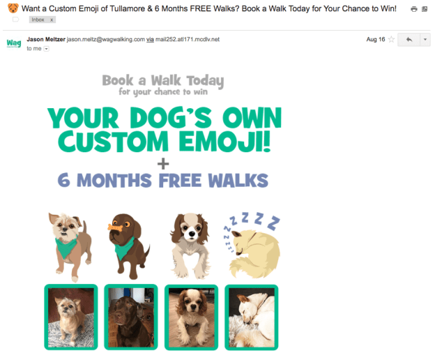 Email newsletter by Wag dog-walking service with pet name in the subject line
