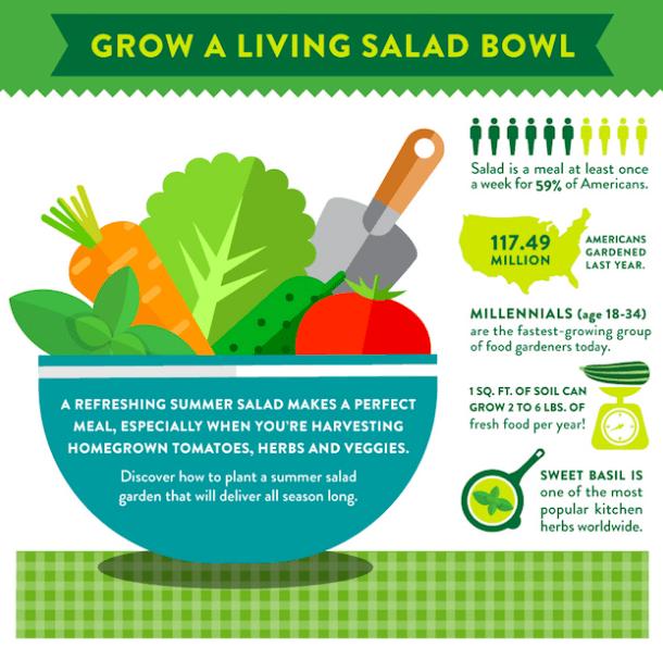 Home_Depot_Salad_Bowl.png