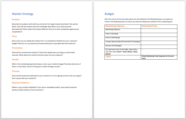 hubspot business plan template