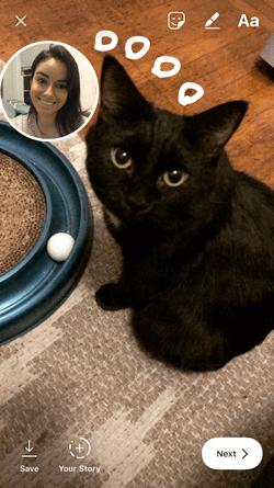Instagram photo of a black cat with selfie sticker