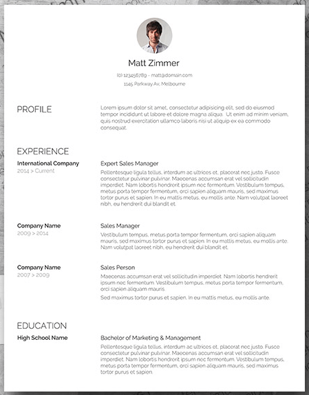 resume template vertical line word