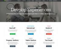20 of the Best Website Homepage Design Examples  iGraphi