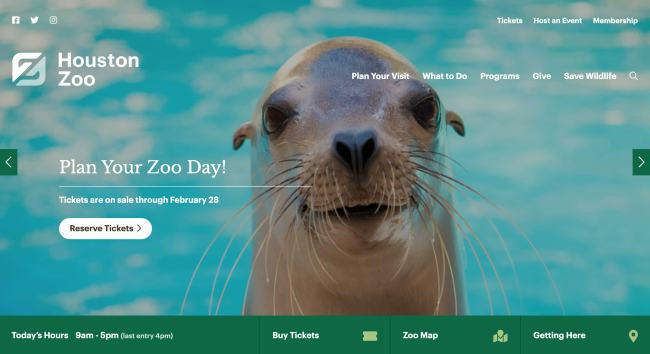 homepage for the houston zoo wordpress website