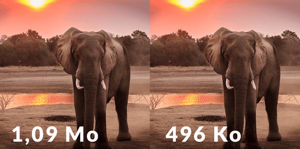 image size optimization with elephant