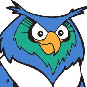 Hudson Montessori School Owl Mascot