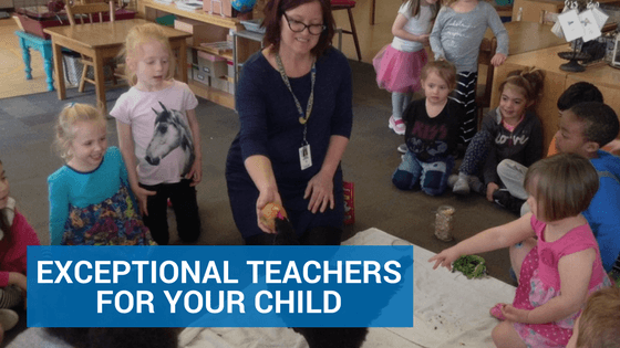 Exceptional Teachers for Your Child