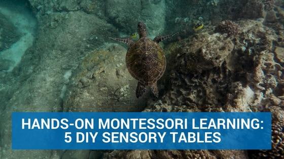 Hands-On Montessori Learning: 5 DIY Sensory Tables