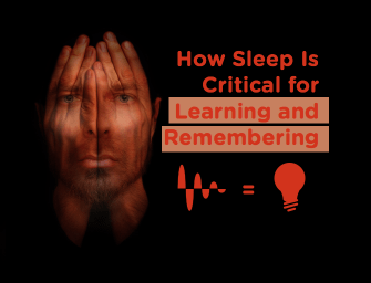 Sleep Is Critical for Learning. Podcast with Professor Marcos Frank