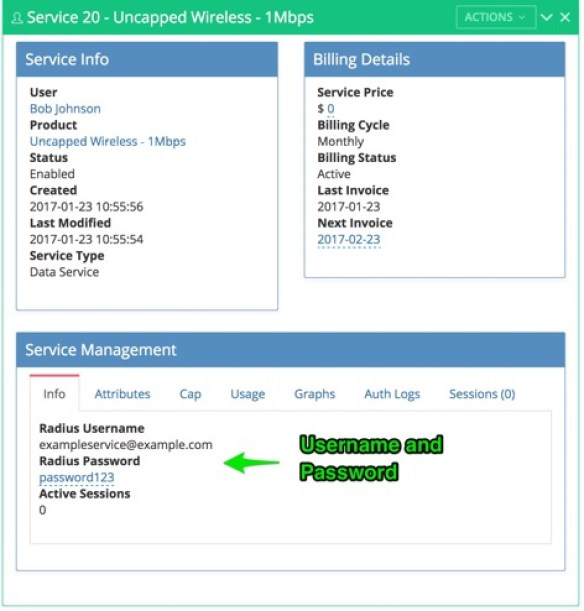 mikrotik radius service details