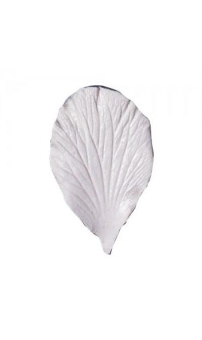 marcador-nervaduras-petalo-y-hojas-hibiscus-squires-kitchen