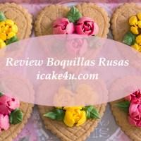 Review y Uso de las Boquillas Rusas de flores para decorar