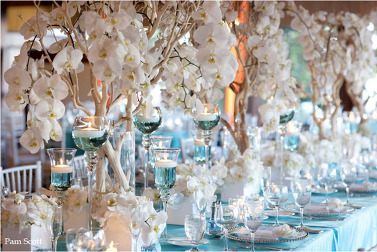 teal chair covers for wedding upholstered chairs cheap manzanita branch centerpieces rentals | centerpiece