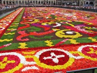 20th Flower Carpet - An ephemeral show on the Worlds Most ...