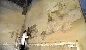 Scoperto a Milano un paesaggio di Leonardo nella Sala delle Asse al Castello Sforzesco  Il blog di Carlo Franza