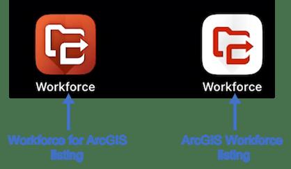 Evolução dos Projetos Workforce