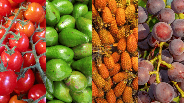 alimentos que fazem parte de dietas anti inflamatórias: tomate, abacate, abacaxi e uvas.