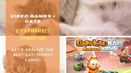 Video games and cats
