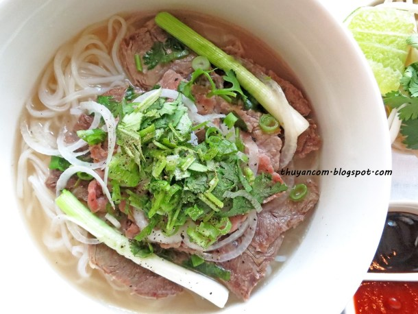 the national dish of Vietnam - pho