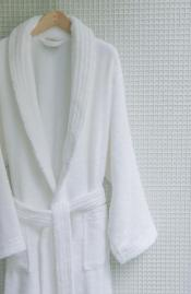 Platinum Velour robe