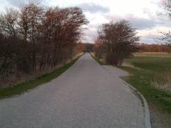 Weißer Weg in Kloster Blick Richtung Osten Anfang April 2012
