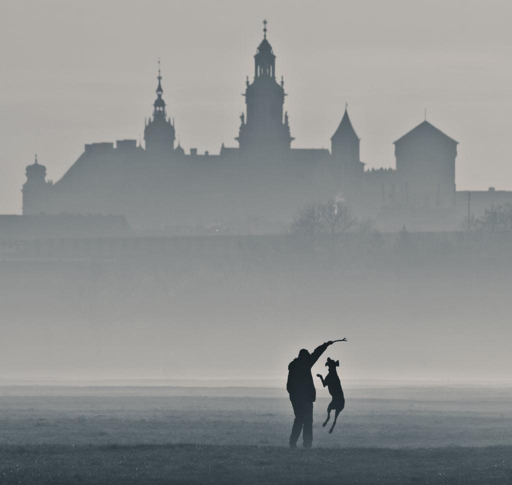 ©Dagmara Kwolek