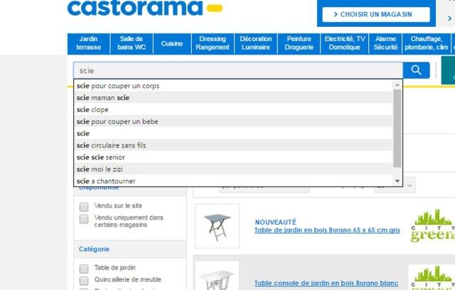 Capture d'écran des suggestions dans la barre de recherche de castorama au moment de la panne