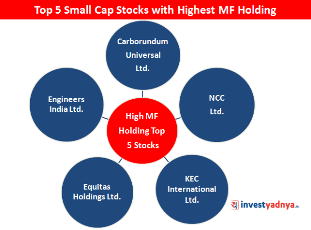 Top 5 Small Cap Stocks with Highest MF Holding