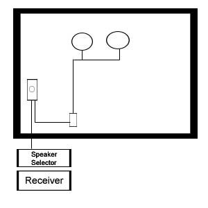Subwoofer Setup Options with Whole House Audio