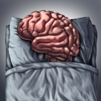 The truth about sleep and brain development in children revealed