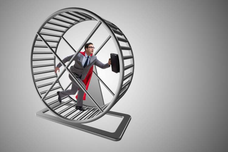 The 28-Hour Hamster Wheel