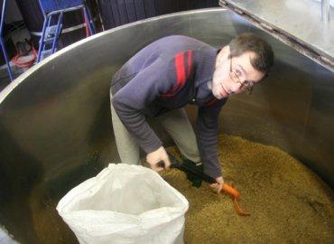 Jacaranda Visit Langham Brewery_0005