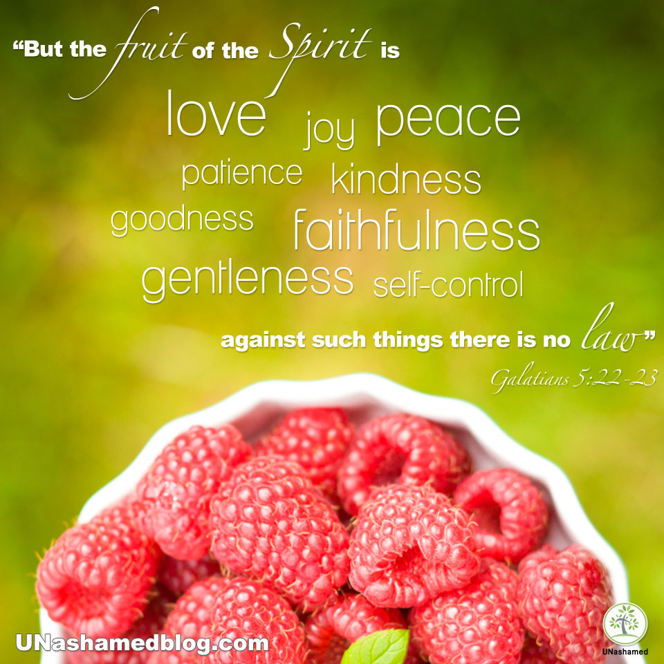 Fruit of the Spirit. Galatians 5:22-23