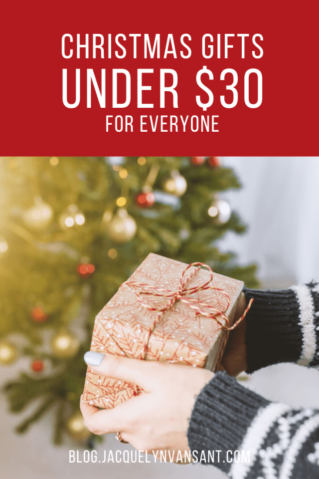 Don't blow your budget! Here are is a fun selection of Christmas gifts under $30.