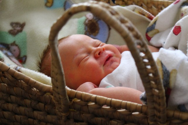 Our third son, Pumpkin, was born in June.