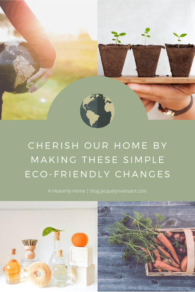 Cherish our home by making these simple eco-friendly changes.