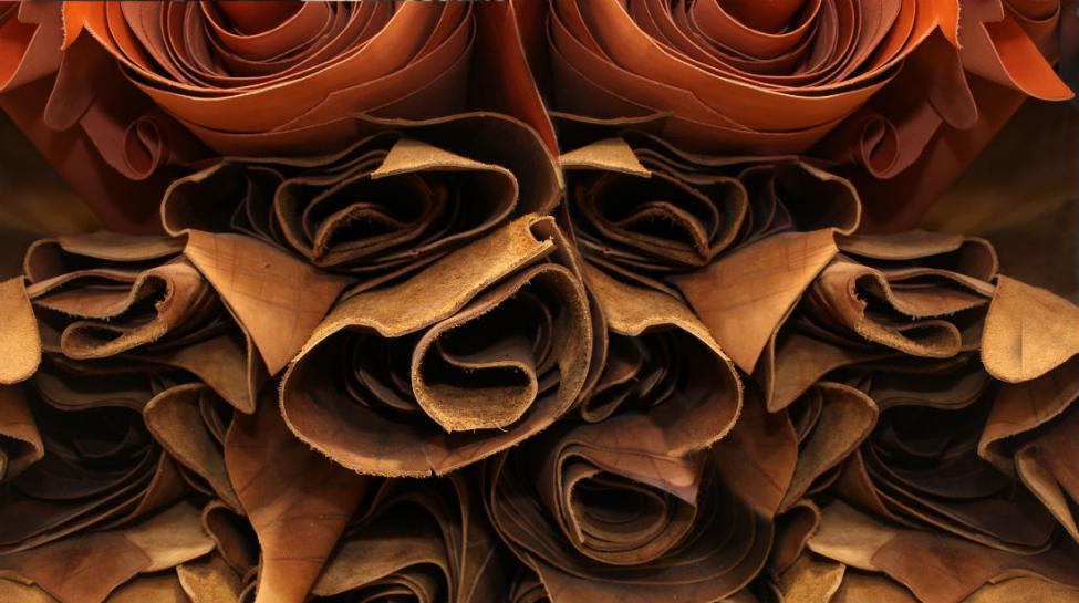 ab24a788b4ab Fabrication du cuir  les bonnes pratiques pour obtenir un cuir de qualité