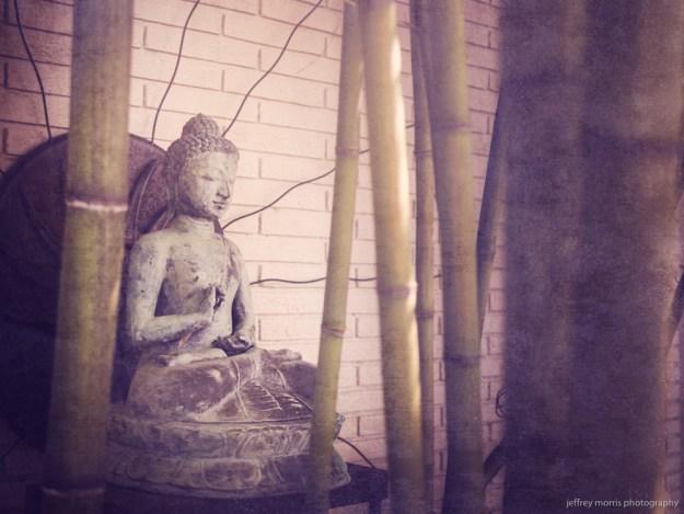 Buddha in the Sticks 2
