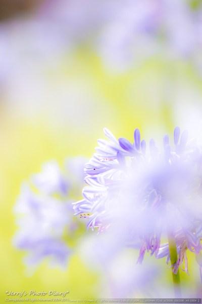 _Blog-20150719-074406