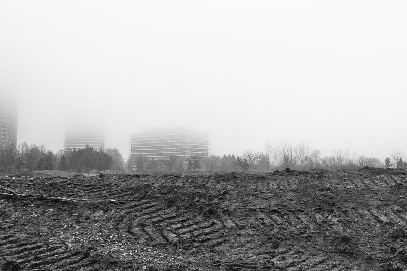 20130113-Walk-03