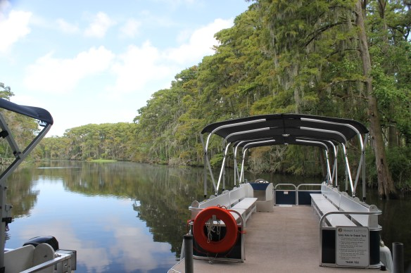 Shangrila bayou boat tours