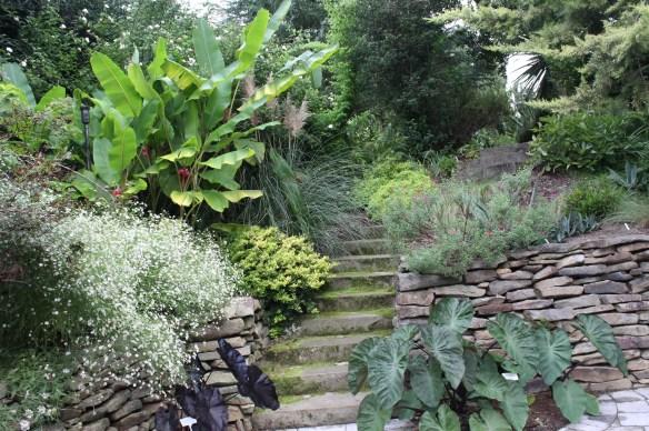 2014 9249 sunken garden toward steps in fall