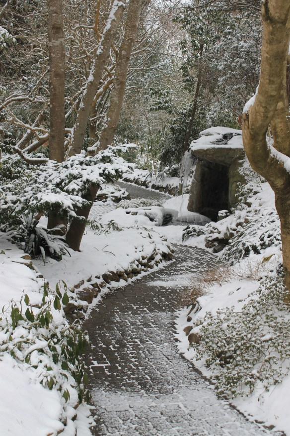 2015 9241 path to grotto looking south in snow