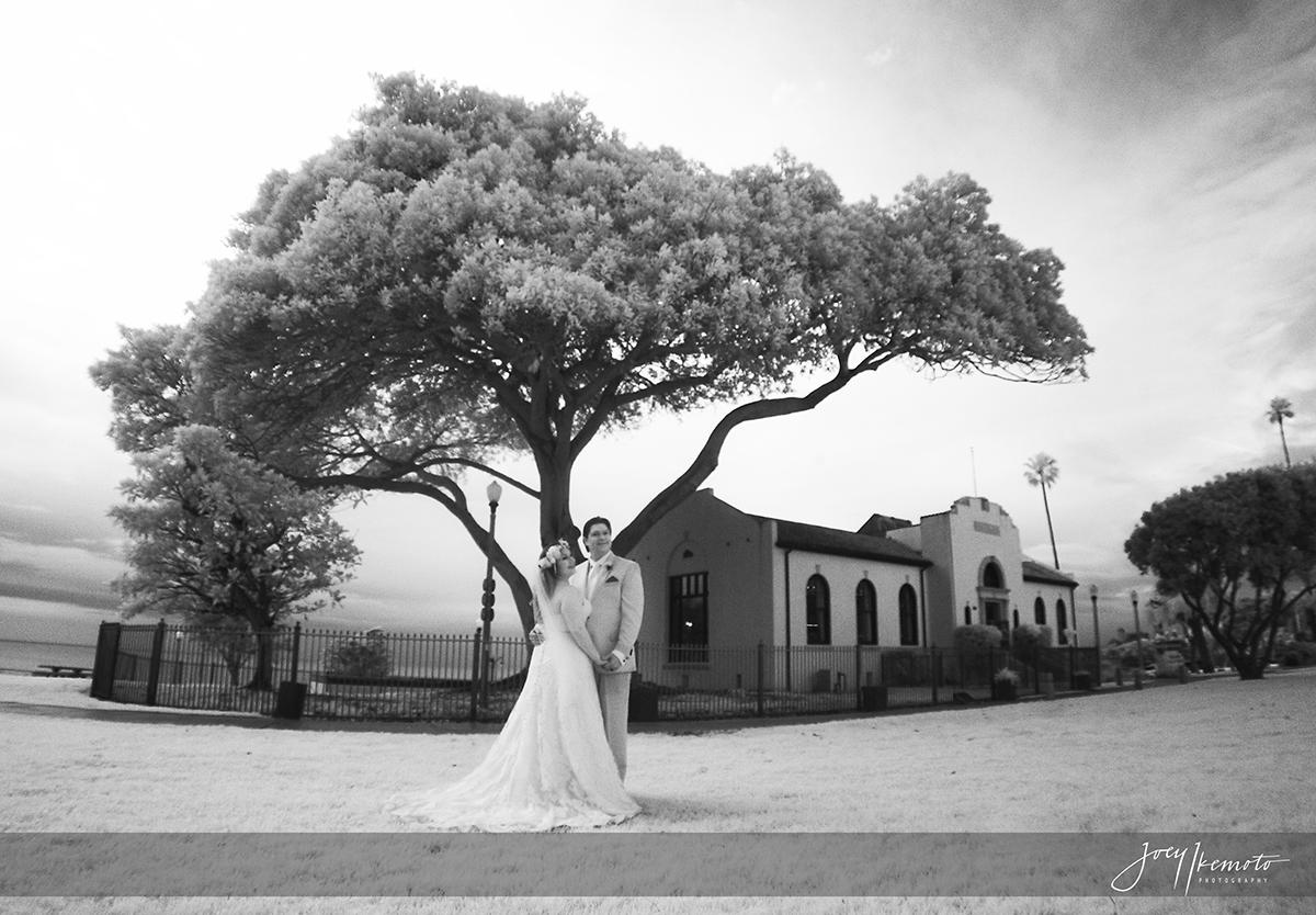 Redondo Beach Historic Library Wedding JeanLuc and Nicole