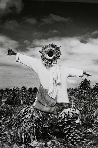 scarecrow_1