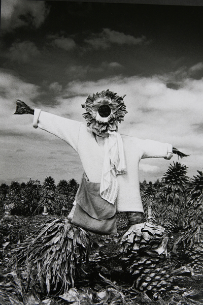 scarecrow by john hicks