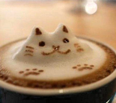 Cats Know Coffee  Coffee  Tea Humor  Reflections From a Murky Pond