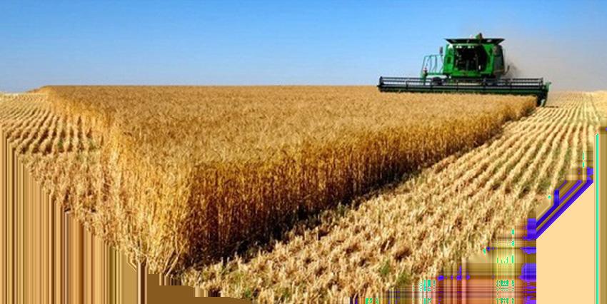 R$ 4 trilhões, o agro pode salvar o PIB nacional